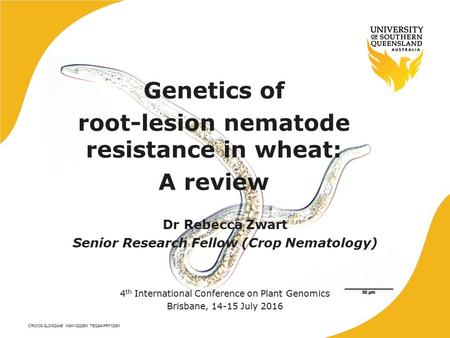 CRICOS QLD00244B NSW 02225M TEQSA:PRF12081 Genetics of root-lesion nematode resistance in wheat: A review Dr Rebecca Zwart Senior Research Fellow (Crop.