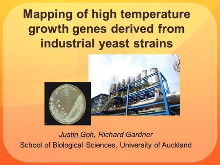 Mapping of high temperature growth genes derived from industrial yeast strains Justin Goh, Richard Gardner School of Biological Sciences, University of.