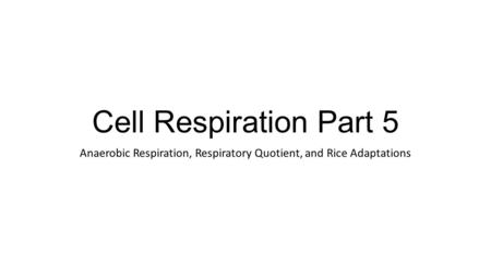 Cell Respiration Part 5 Anaerobic Respiration, Respiratory Quotient, and Rice Adaptations.