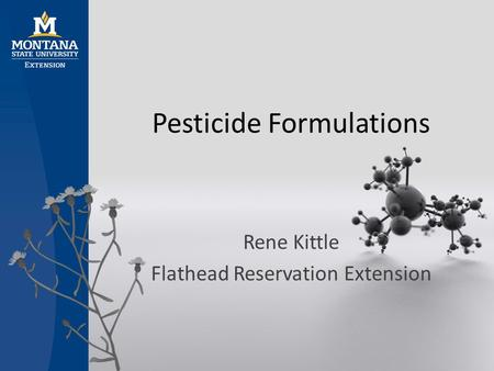 Pesticide Formulations Rene Kittle Flathead Reservation Extension.