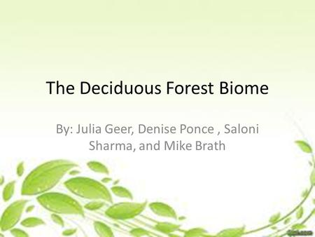 The Deciduous Forest Biome By: Julia Geer, Denise Ponce, Saloni Sharma, and Mike Brath.