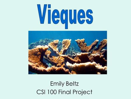 Emily Beltz CSI 100 Final Project. Vieques is located 8 miles off the eastern shore of Puerto Rico. In the 1940s, the US military took over Vieques to.