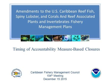 Amendments to the U.S. Caribbean Reef Fish, Spiny Lobster, and Corals And Reef Associated Plants and Invertebrates Fishery Management Plans Amendments.