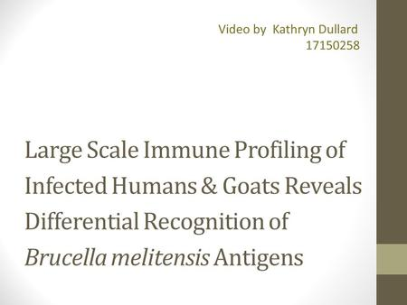 Large Scale Immune Profiling of Infected Humans & Goats Reveals Differential Recognition of Brucella melitensis Antigens Video by Kathryn Dullard
