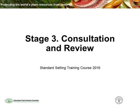 Stage 3. Consultation and Review Standard Setting Training Course 2016.