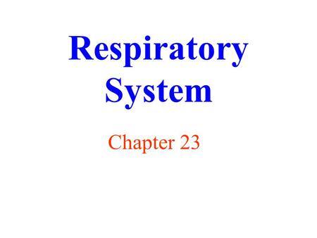Respiratory System Chapter 23. Functions of Respiratory System supply oxygen (O 2 ) remove carbon dioxide (CO 2 ) regulation of blood pH receptors for.