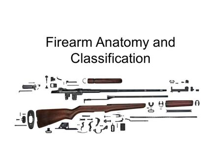 Firearm Anatomy and Classification. Firearm Safety Main outcome of Firearm Safety is to prevent firearm and hunting accidents and to ensure the future.