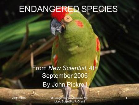 20/11/2016 ENDANGERED SPECIES From New Scientist, 4th September 2006 By John Pickrell 20/11/20161M.Bongiovanni e M.Recine 1°C Liceo Scientifico A.Oriani.
