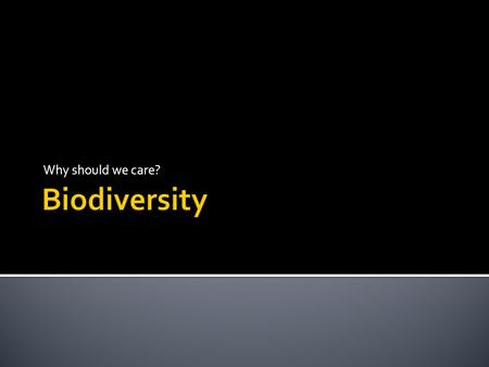 Why should we care?.  Diversity measured on three levels  Genetic  Species  Ecosystem.