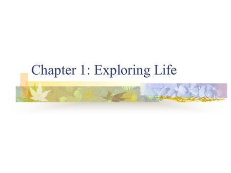 Chapter 1: Exploring Life. 1.1 Living Things What do you see that is living when you go outside during the summer?