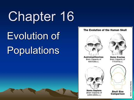 Chapter 16 Evolution of Populations. 16-1: Genes and Variation natural selection relies on variation genes are the source of inheritable variation when.