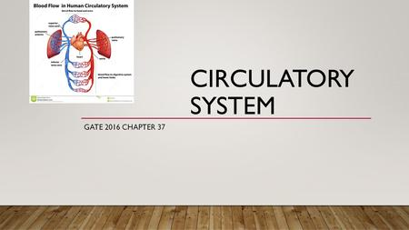 CIRCULATORY SYSTEM GATE 2016 CHAPTER 37. COMPONENTS OF THE CIRCULATORY SYSTEM Heart – The pump Blood – The fluid Blood Vessels – The tubes Arteries, capillaries.
