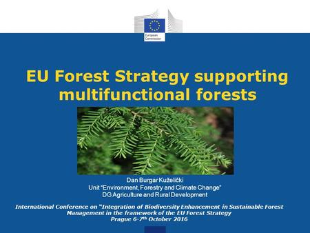"EU Forest Strategy supporting multifunctional forests Dan Burgar Kuželički Unit ""Environment, Forestry and Climate Change"" DG Agriculture and Rural Development."