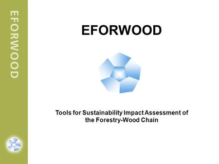EFORWOOD Tools for Sustainability Impact Assessment of the Forestry-Wood Chain.