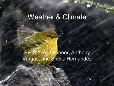 Weather & Climate By: Stacey Groener, Anthony Vargas, and Sheila Hernandez.