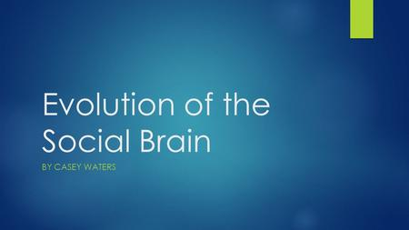 Evolution of the Social Brain BY CASEY WATERS. What makes us different from chimpanzees?  Social intelligence  Sense of self  Theory of Mind  Our.