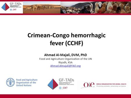 Crimean-Congo hemorrhagic fever (CCHF) Ahmad Al-Majali, DVM, PhD Food and Agriculture Organization of the UN Riyadh, KSA