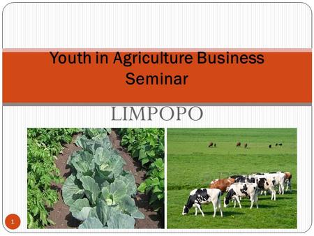 LIMPOPO 1 Youth in Agriculture Business Seminar. 1. Background 2 Dinoko Tsa Serala Events and Exhibitions; an events, exhibitions and conference management.