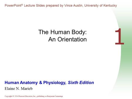 Copyright © 2004 Pearson Education, Inc., publishing as Benjamin Cummings Human Anatomy & Physiology, Sixth Edition Elaine N. Marieb PowerPoint ® Lecture.
