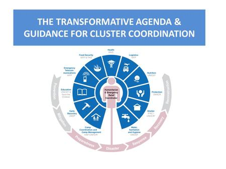 THE TRANSFORMATIVE AGENDA & GUIDANCE FOR CLUSTER COORDINATION.