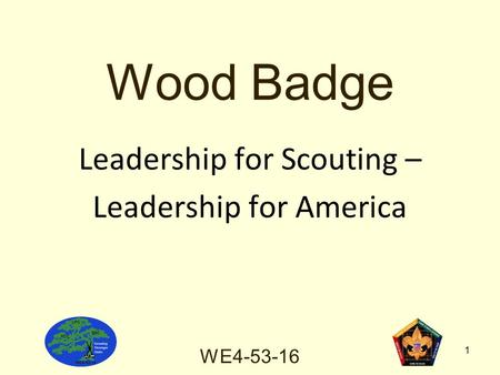 WE Wood Badge Leadership for Scouting – Leadership for America.