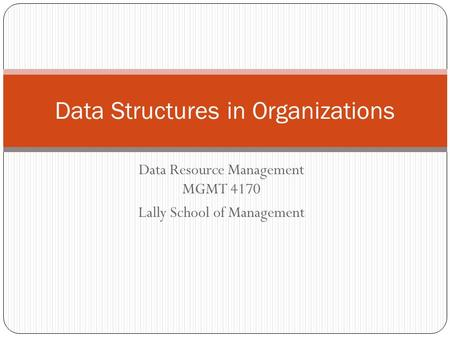 Data Resource Management MGMT 4170 Lally School of Management Data Structures in Organizations.