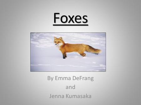 Foxes By Emma DeFrang and Jenna Kumasaka. Fox Pictures Arctic Fox Picture Fennec (desert) Fox picture Red Fox Picture.
