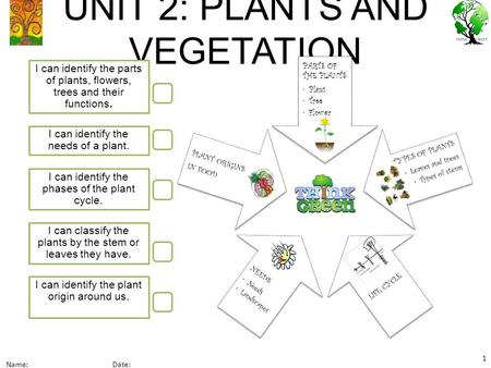 UNIT 2: PLANTS AND VEGETATION I can identify the parts of plants, flowers, trees and their functions. I can classify the plants by the stem or leaves they.