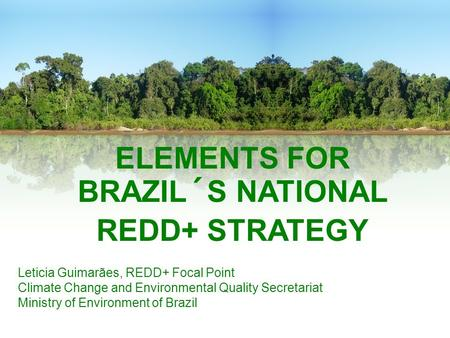 ELEMENTS FOR BRAZIL´S NATIONAL REDD+ STRATEGY Leticia Guimarães, REDD+ Focal Point Climate Change and Environmental Quality Secretariat Ministry of Environment.