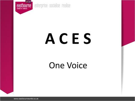 A C E S One Voice. The Alliance of Chambers in East Sussex Christina Ewbank Facilitator 14 th January