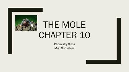 THE MOLE CHAPTER 10 Chemistry Class Mrs. Gonsalves.