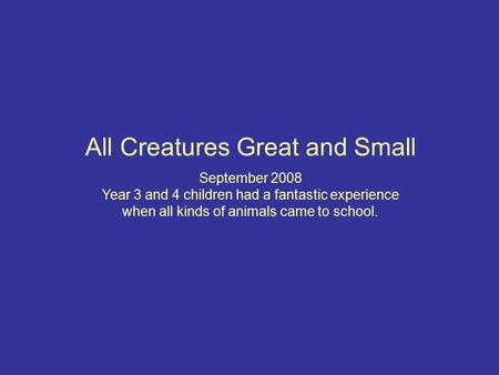 All Creatures Great and Small September 2008 Year 3 and 4 children had a fantastic experience when all kinds of animals came to school.