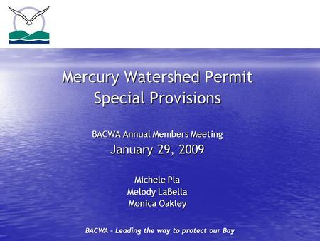 BACWA – Leading the way to protect our Bay Mercury Watershed Permit Special Provisions BACWA Annual Members Meeting January 29, 2009 Michele Pla Melody.