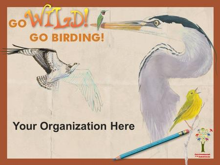 Your Organization Here. Birding Beginnings The words bird watching and bird watcher were first used in the book Bird Watching. The writer Edmund Selous.