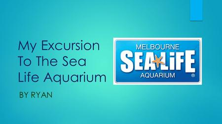 My Excursion To The Sea Life Aquarium BY RYAN.  Today my class (1/2CP) went to the Melbourne Sea Life Aquarium. It was an amazing experience.  First.