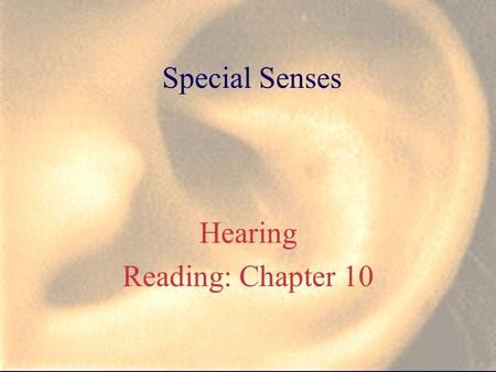 Special Senses Hearing Reading: Chapter 10. C. HEARING 1) Outer ear a) auricle = pinna, why is this structure important? b) external auditory meatus =