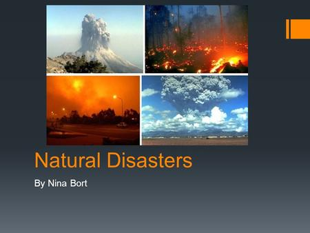 Natural Disasters By Nina Bort. Why is this important?  Natural disasters are important, because they don't only effect buildings and land, they affect.