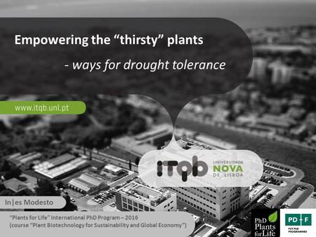 "Empowering the ""thirsty"" plants - ways for drought tolerance In