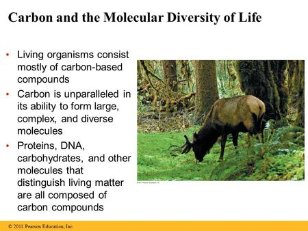 Carbon and the Molecular Diversity of Life Living organisms consist mostly of carbon-based compounds Carbon is unparalleled in its ability to form large,