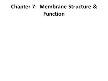 Chapter 7: Membrane Structure & Function. membrane a fluid mosaic of lipids, proteins, and carbohydrates. held together by hydrophobic interactions membrane.