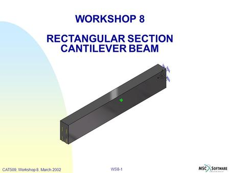 WS8-1 WORKSHOP 8 RECTANGULAR SECTION CANTILEVER BEAM CAT509, Workshop 8, March 2002.