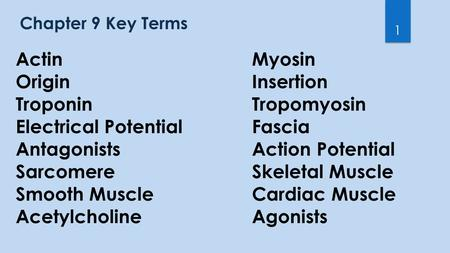 Chapter 9 Key Terms 1 ActinMyosin OriginInsertion TroponinTropomyosin Electrical Potential Fascia AntagonistsAction Potential SarcomereSkeletal Muscle.