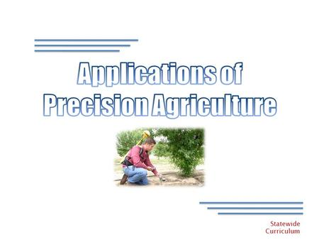 Statewide Curriculum. Statewide Curriculum Precision Agriculture – Lesson 5 What is Precision Agriculture?? Managing Each Crop Production Input – Fertilizer.