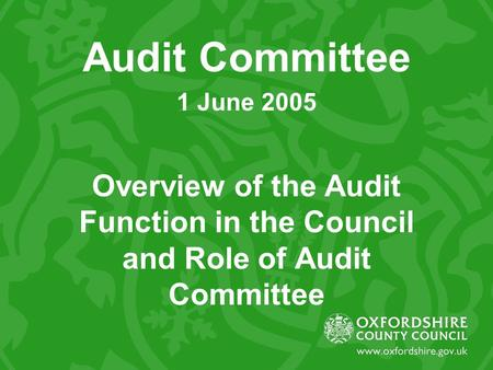 Audit Committee 1 June 2005 Overview of the Audit Function in the Council and Role of Audit Committee.