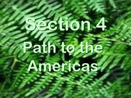 Section 4 Path to the Americas. The Earliest Americans  A land bridge, Beringia, once connected Asia and North America Where did they come from?
