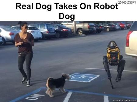 Real Dog Takes On Robot Dog 김민지. Many people are watching a video showing a real dog barking at a robot dog. The robot was made by Boston Dynamics,