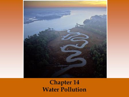 Chapter 14 Water Pollution. Water Pollution: The Chesapeake Bay case study The largest estuary in the United States. Where does the large source of Nitrogen.