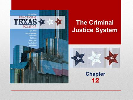 The Criminal Justice System Chapter 12. Elements of the Criminal Justice System  Criminal Justice Law  Texas criminal justice system: The system of.
