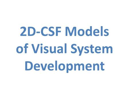 2D-CSF Models of Visual System Development. Model of Adult Spatial Vision.