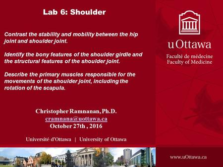 Lab 6: Shoulder Christopher Ramnanan, Ph.D. October 27th, 2016 Contrast the stability and mobility between the hip joint and shoulder.